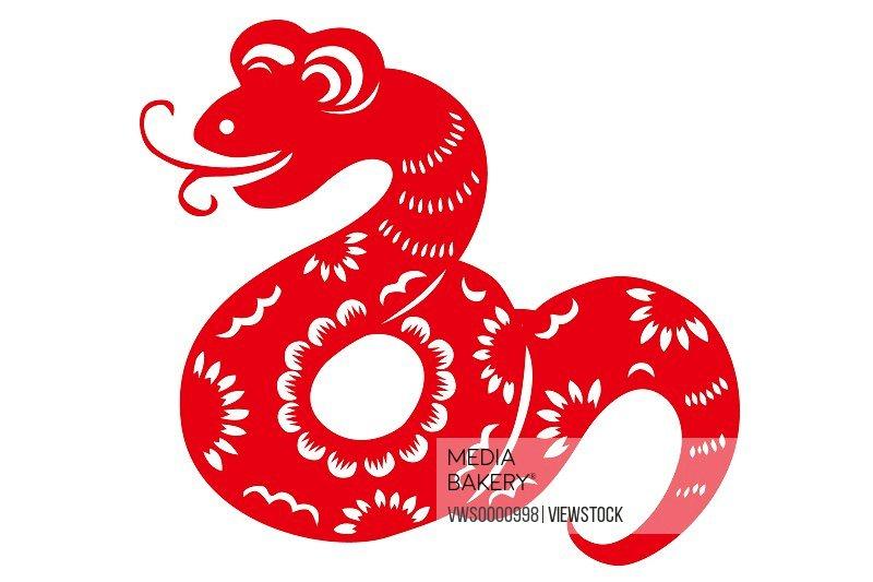 Illustration of snake