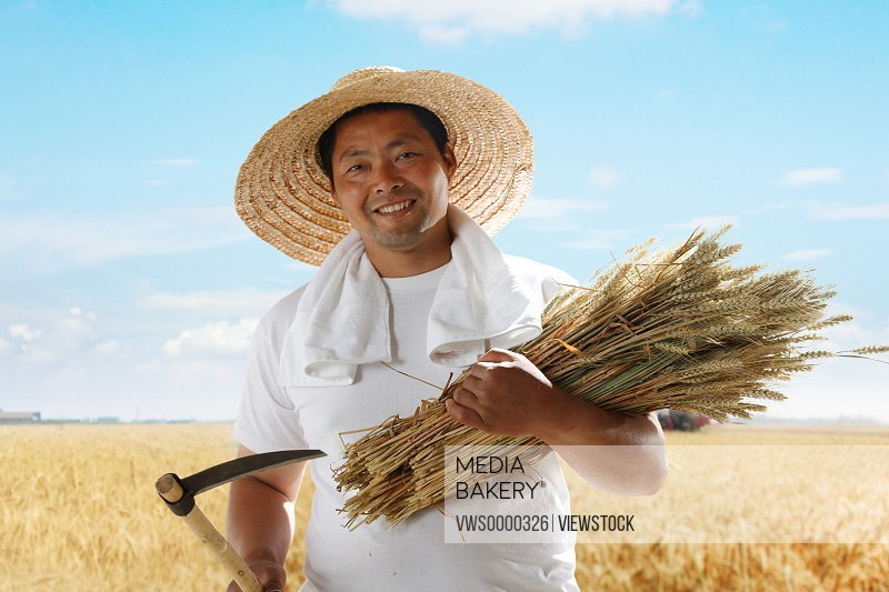 Farmer holding wheat and sickle in field