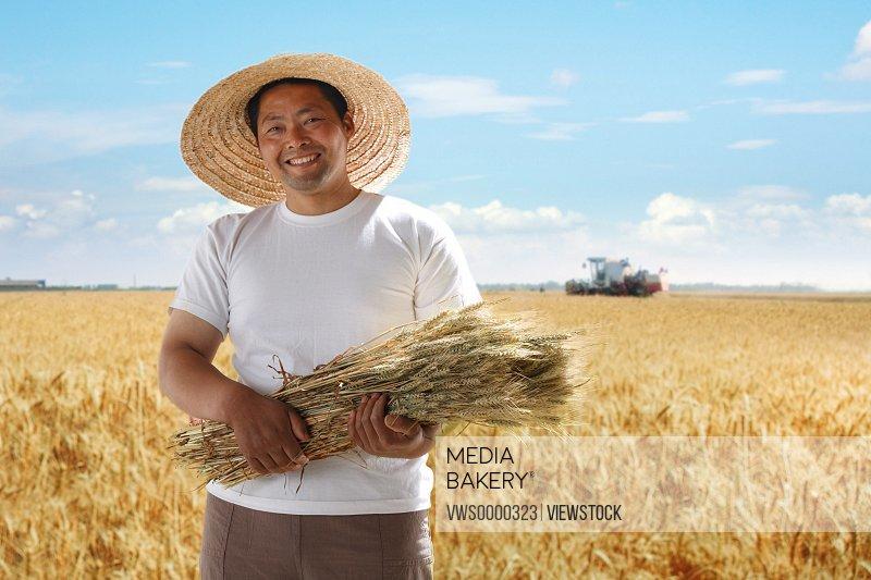 Farmer holding wheat in field