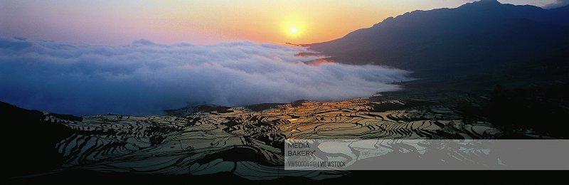 Field in yuanyang China
