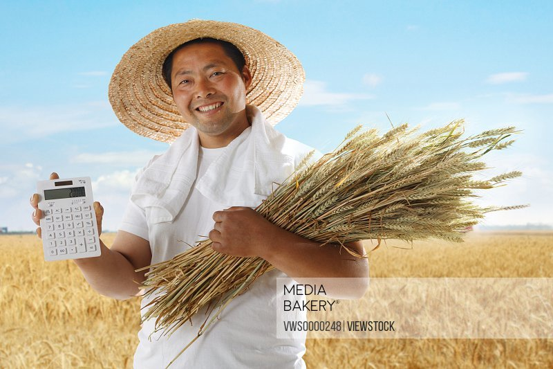 Farmer holding wheat and calculator