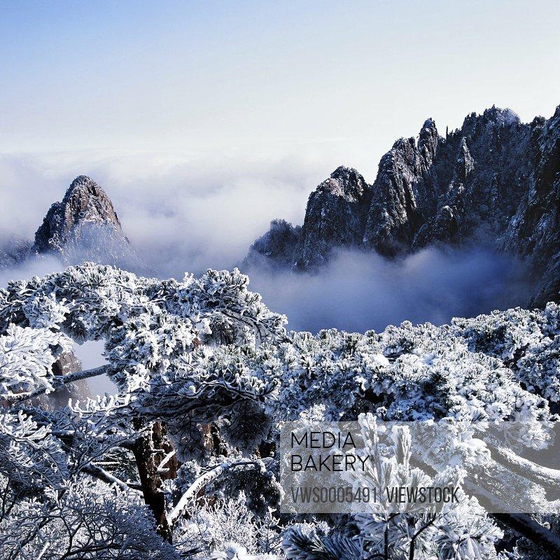Mt huangshan Anhui China