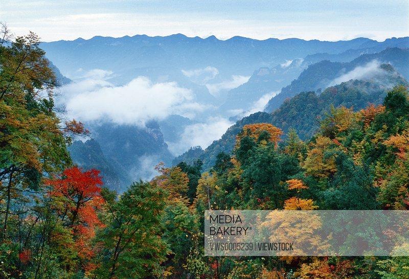 Autumn scenics non-urban scene Sichuan Province China