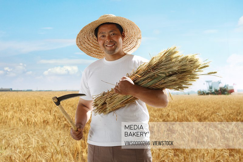 Farmer holding scythe and wheat in wheat field