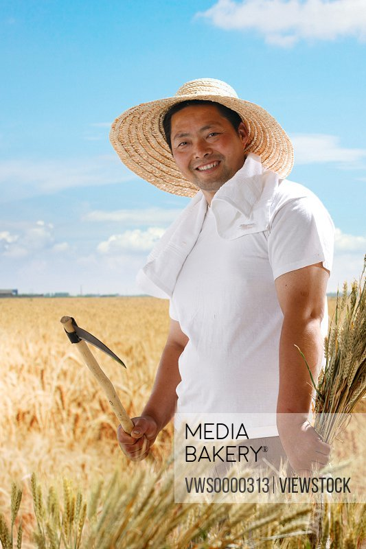 Farmer holding sickle in wheat field