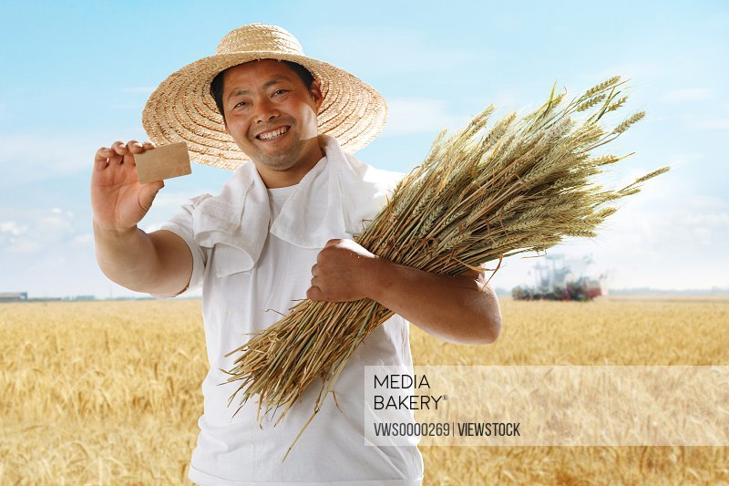 Farmer holding credit card and wheat in field