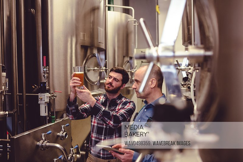 Male owner and worker examining beer in glass at brewery