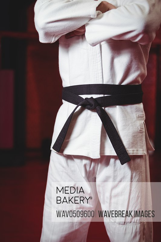 Mid section of karate player in black belt