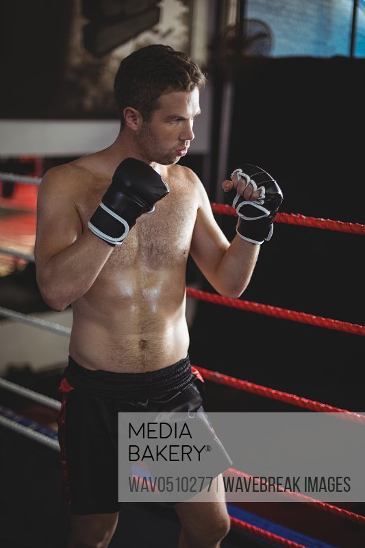 Confident boxer performing boxing stance in boxing ring