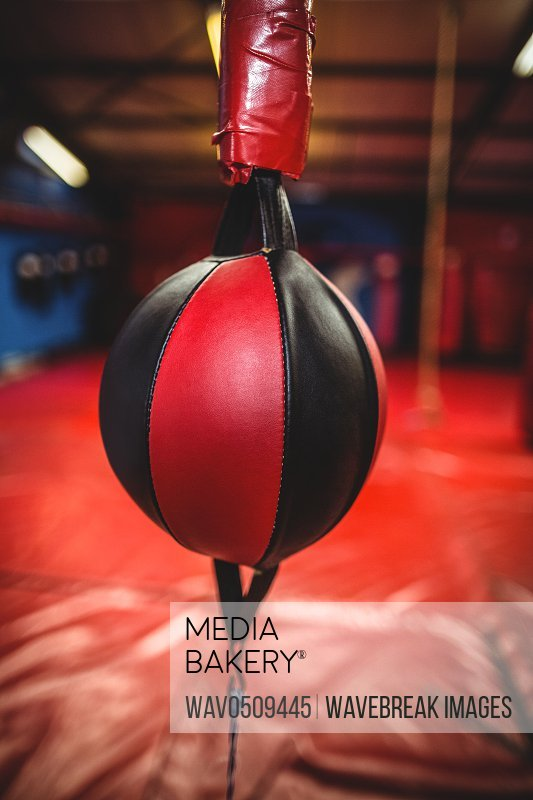 Close-up of speed boxing ball in fitness studio