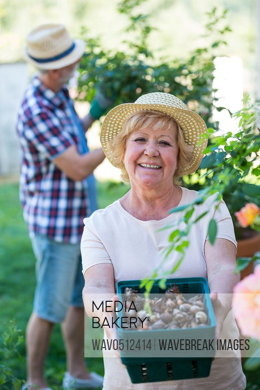 Portrait of senior woman holding crate of snail in garden on a sunny day