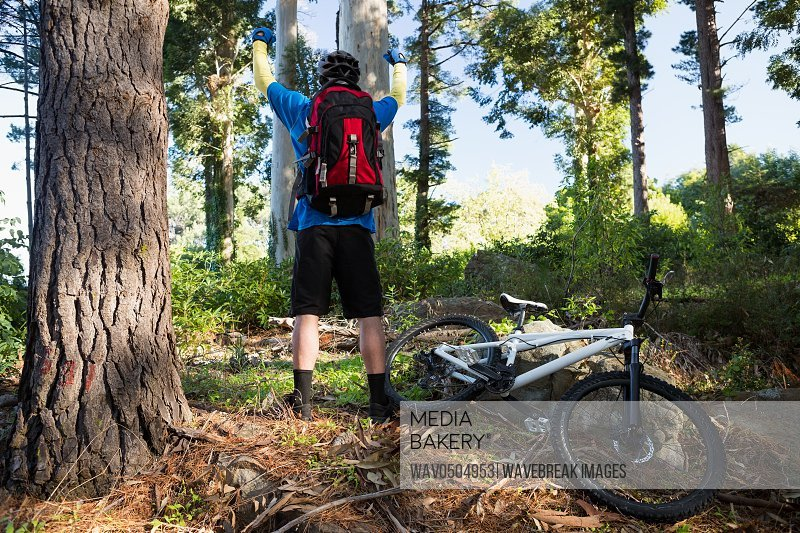 Excited mountain biker in the forest on a sunny day