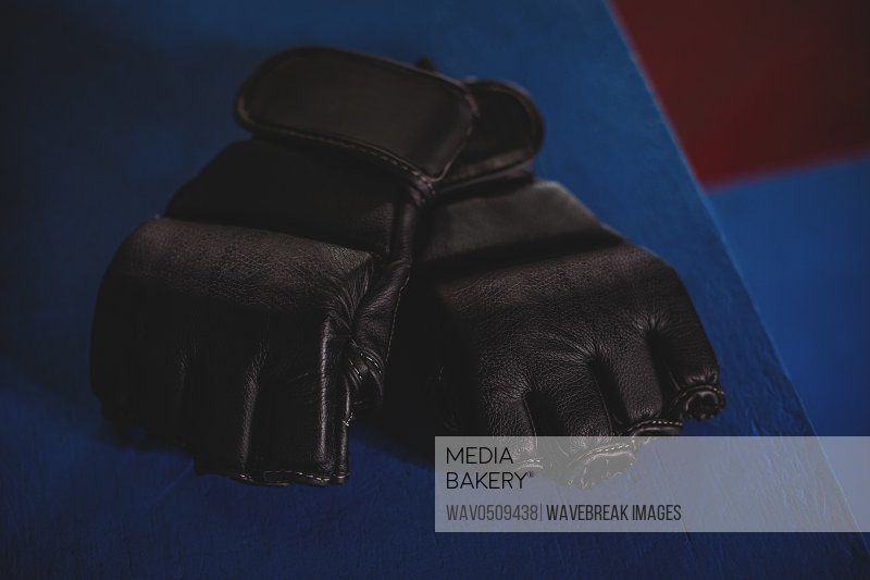 Pair of mma gloves on blue surface