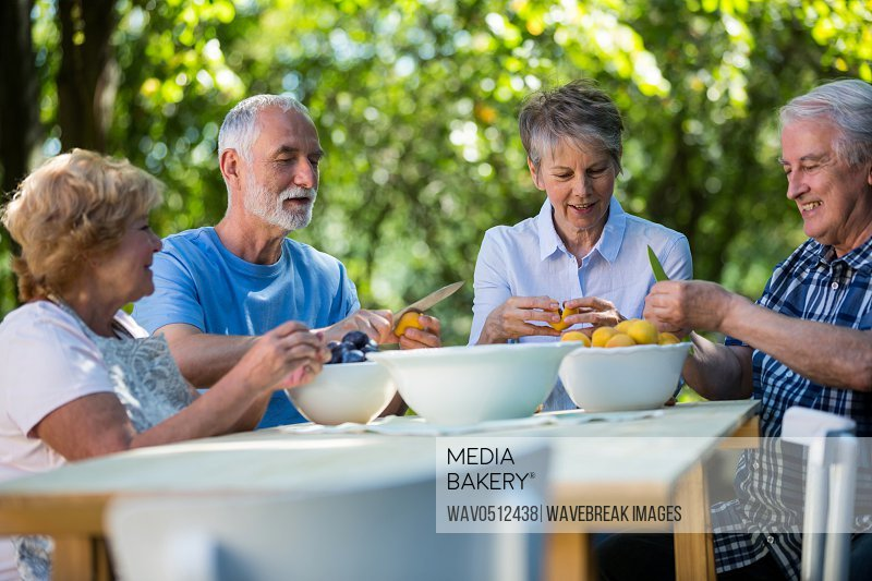 Senior couples removing seeds of apricot fruits in garden on a sunny day