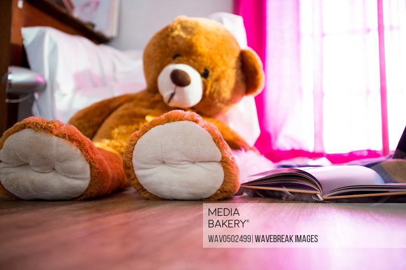 Teddy bear and book lying on wooden floor at home