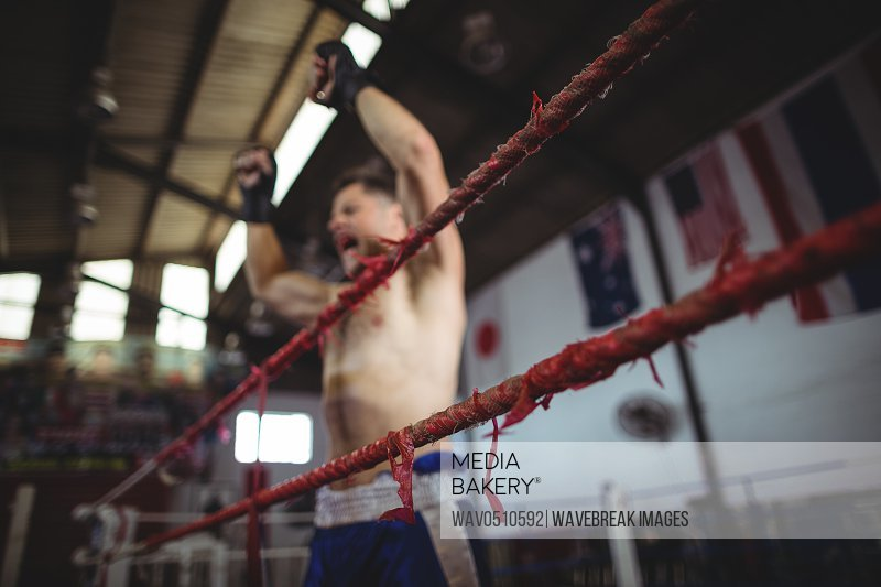 Excited boxer posing after victory in boxing ring