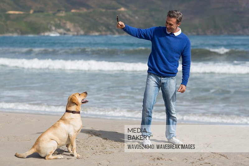 Mature man playing with dog on the beach
