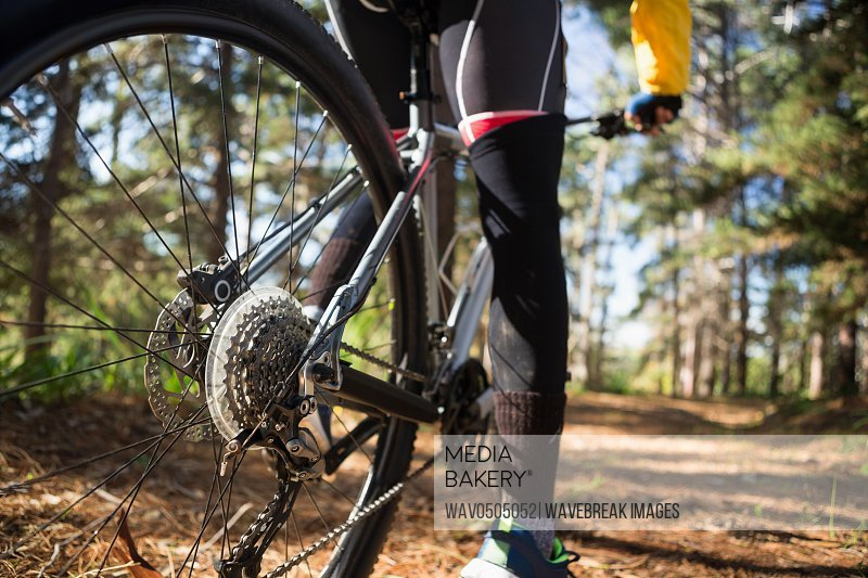 Low section of male mountain biker riding bicycle in forest on a sunny day
