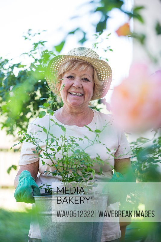 Portrait of senior woman standing with pot plant in garden