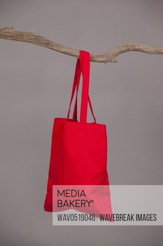 Red bag hanging on a tree branch