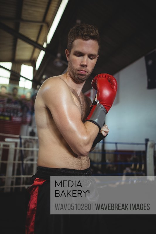 Boxer with boxing gloves in boxing ring
