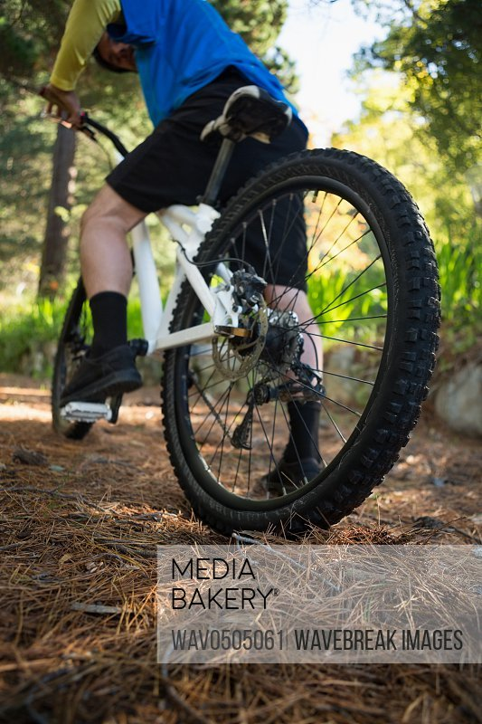 Male mountain biker riding bicycle in forest on a sunny day