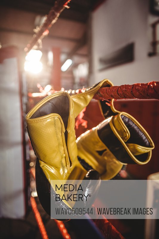 Pair of yellow boxing gloves hanging off the boxing ring
