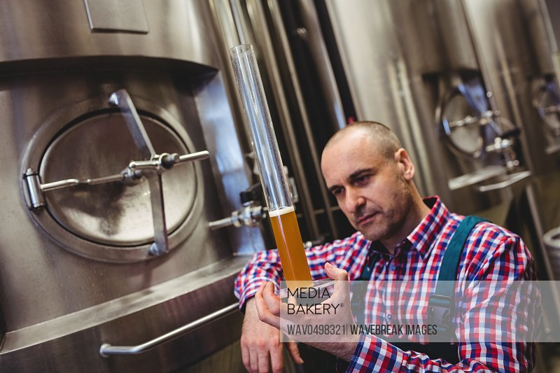 Manufacturer inspecting beer in glass tube at brewery