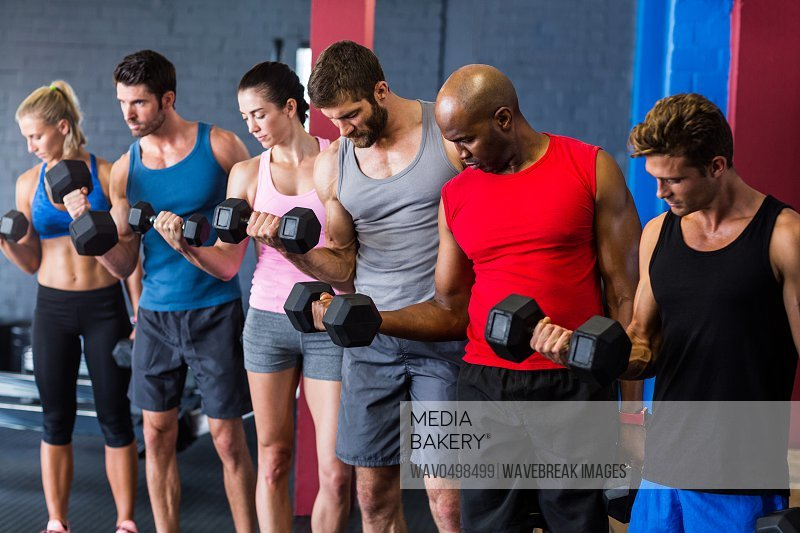 Fit friends lifting dumbbells while standing in gym