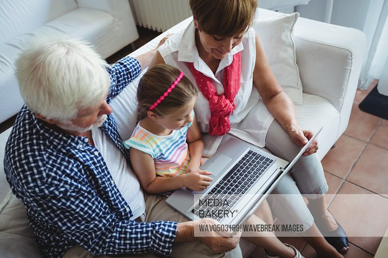 Grandparents and granddaughter using laptop in living room in living room at home