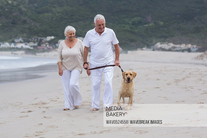 Senior couple walking on the beach with dog