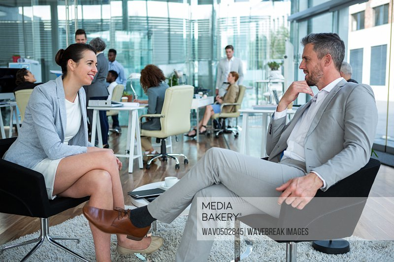 Smiling business executive interacting in office