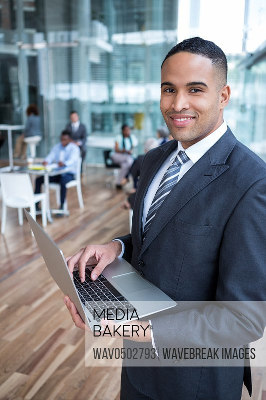 Portrait of smiling businessman using laptop in the office