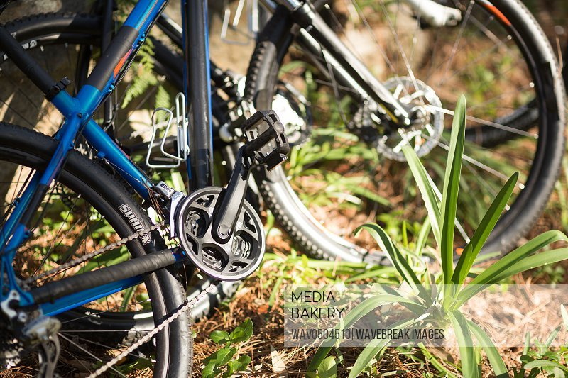 Close-up of mountain bike in forest at countryside