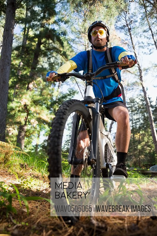 Male mountain biker with bicycle in the forest on a sunny day