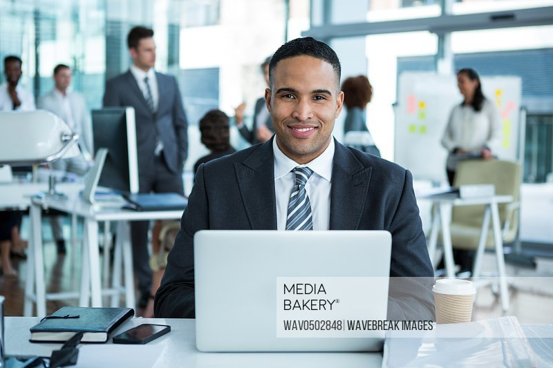 Portrait of businessman working on laptop in the office