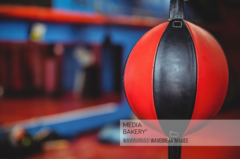 Close-up of a speed boxing ball in fitness studio