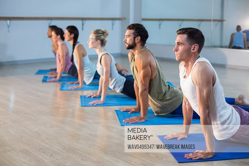 Group of people performing yoga in gym