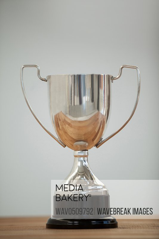 Close-up of champion silver trophy on white background