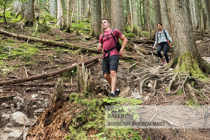 Couple hiking in countryside forest