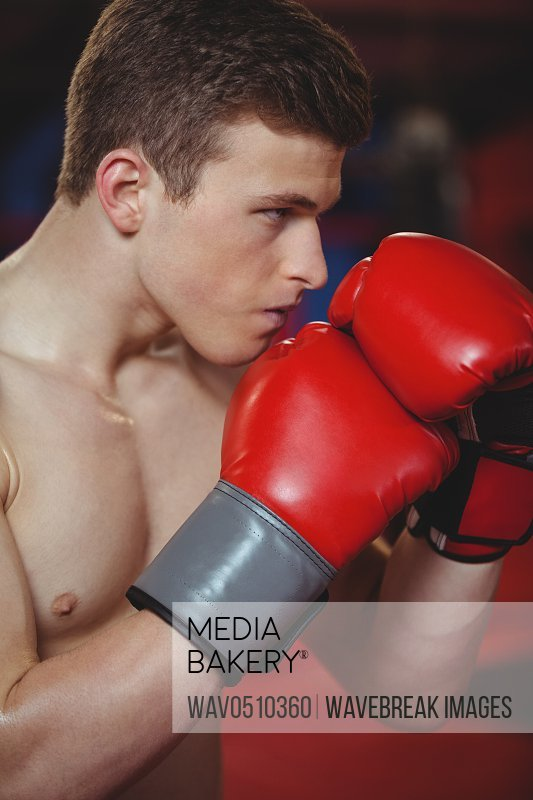 Close-up of confident boxer fighting in fitness studio