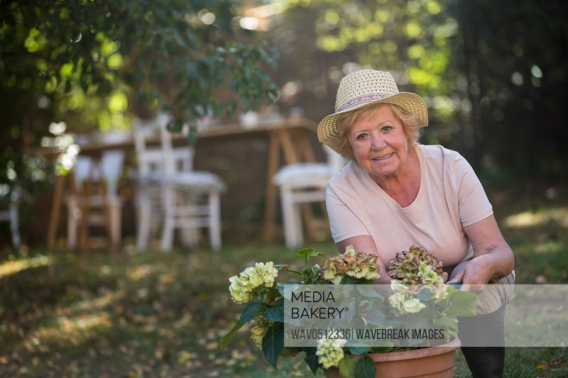 Portrait of senior woman carrying pot plant in garden on a sunny day