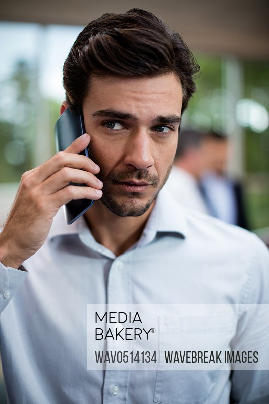 Male business executive talking on mobile phone