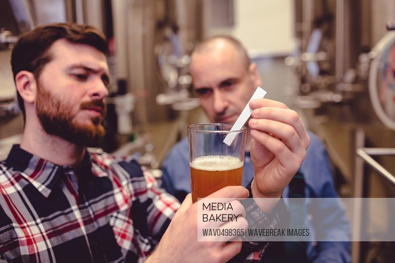 Owner inspecting beer in glass mug at brewery