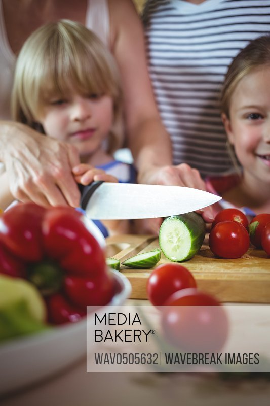 Family chopping vegetables in the kitchen at home