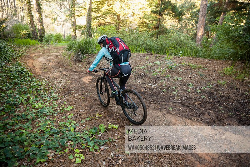 Female mountain biker riding bicycle in the forest on a sunny day