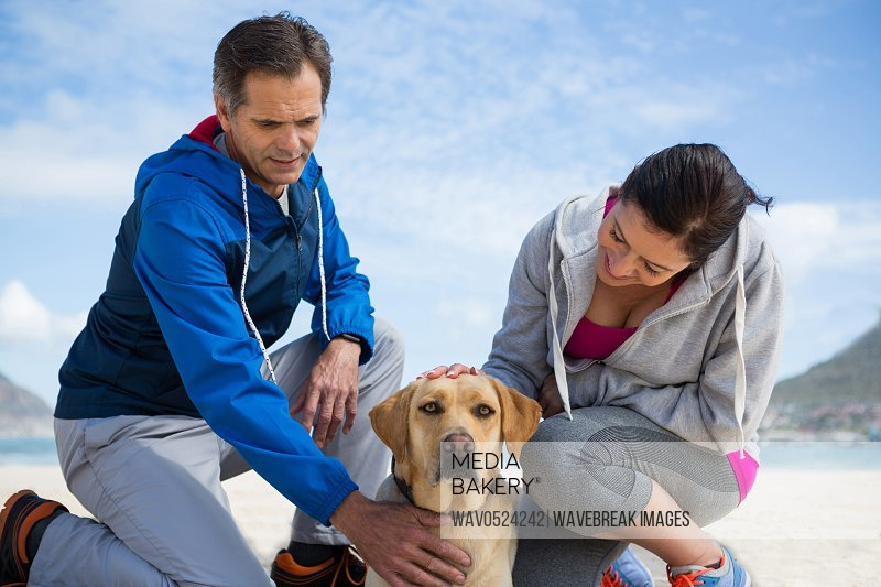 Smiling couple with their pet dog