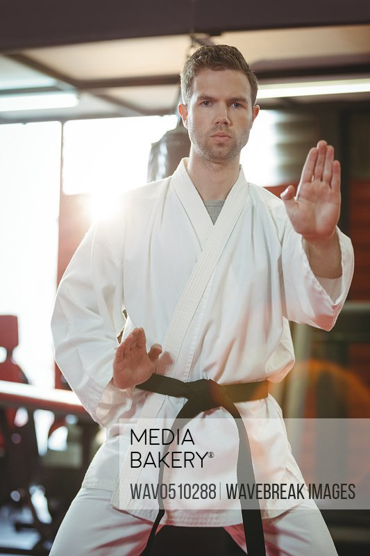 Karate player performing karate stance in fitness studio
