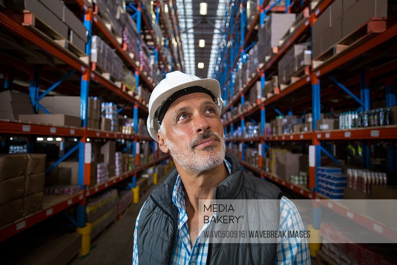 Warehouse worker looking at cardboard boxes on shelves in the ware house