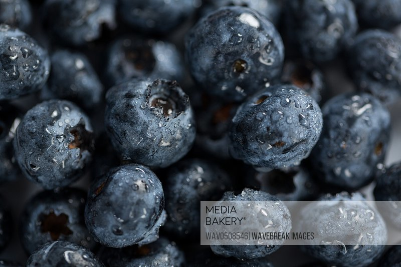 Close-up of fresh blueberries with water drops